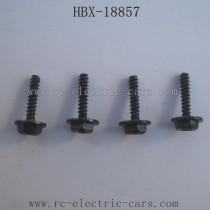 HBX-18857 Car Parts Wheel Screws
